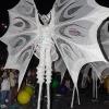 carnaval-nuit-2020-3-10