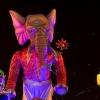 carnaval-nuit-2020-4-8